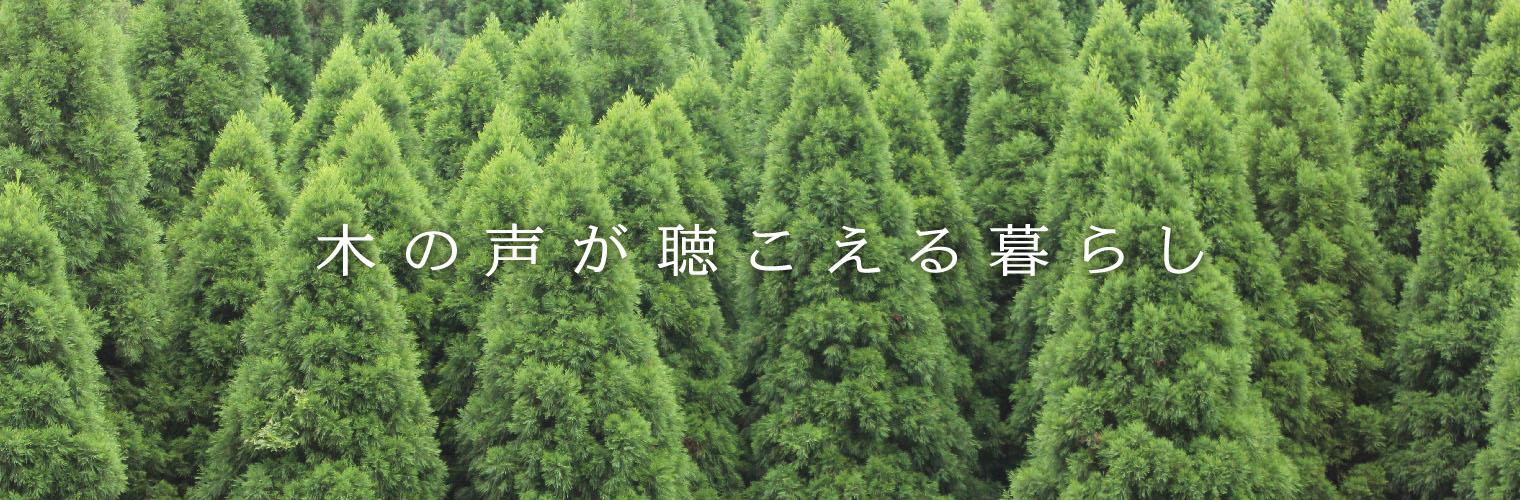 木の声が聴こえる暮らし